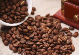 Кофе Галапагос Сан Кристобаль